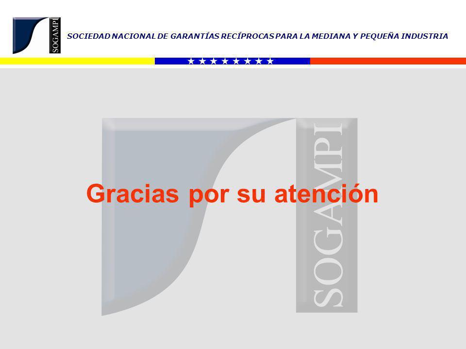 SOCIEDAD NACIONAL DE GARANTÍAS RECÍPROCAS PARA LA MEDIANA Y PEQUEÑA INDUSTRIA Gracias por su atención