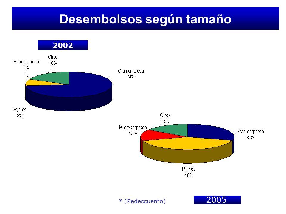 Desembolsos según tamaño 2002 * (Redescuento) 2005