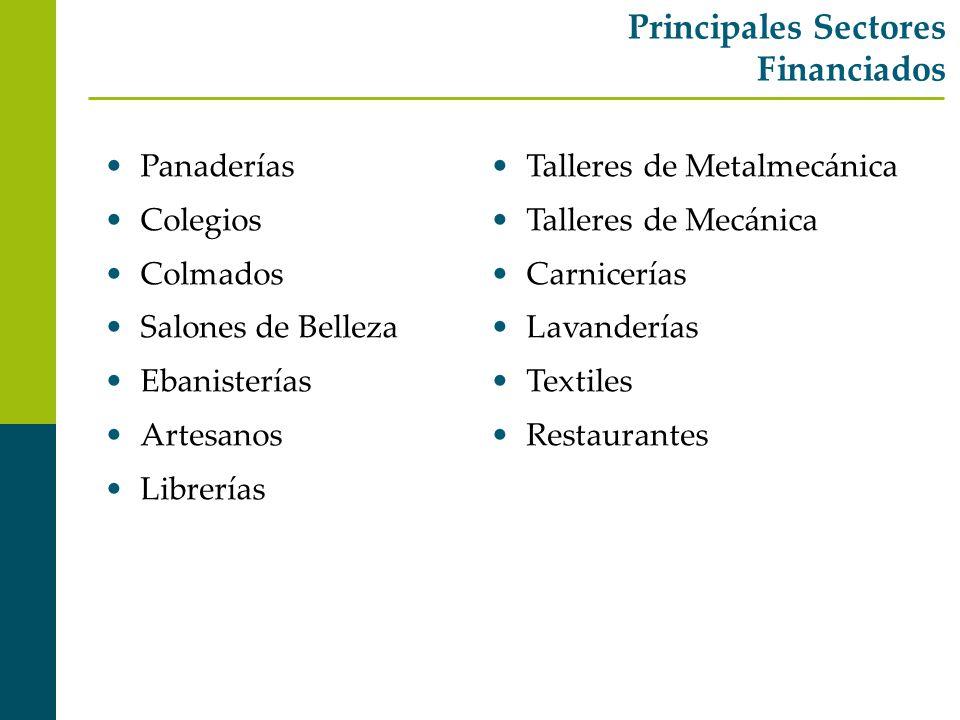Principales Sectores Financiados Panaderías Colegios Colmados Salones de Belleza Ebanisterías Artesanos Librerías Talleres de Metalmecánica Talleres d