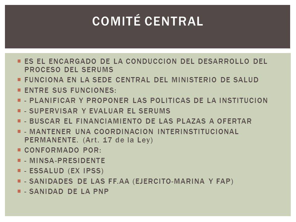 ES EL ENCARGADO DE LA CONDUCCION DEL DESARROLLO DEL PROCESO DEL SERUMS FUNCIONA EN LA SEDE CENTRAL DEL MINISTERIO DE SALUD ENTRE SUS FUNCIONES: - PLAN