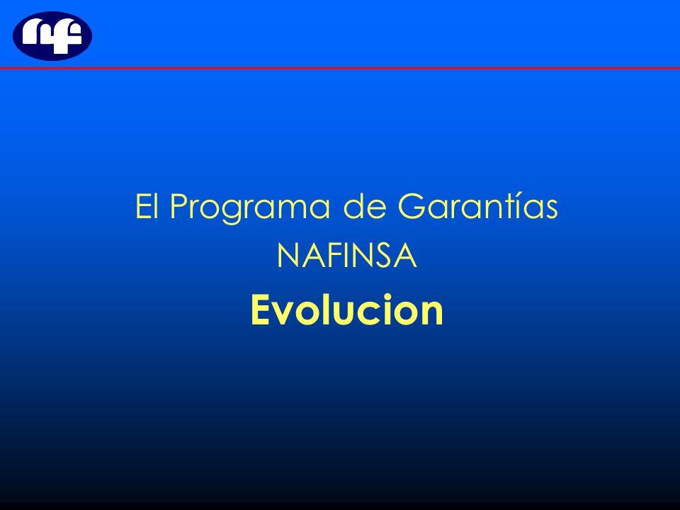 El Programa de Garantías NAFINSA Evolucion