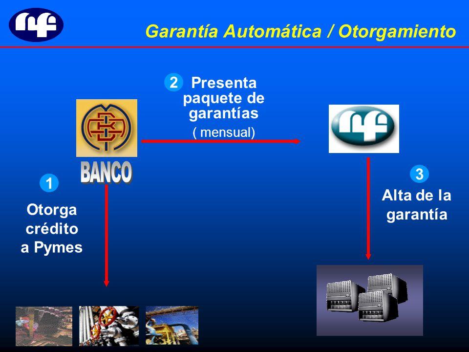 Otorga crédito a Pymes Presenta paquete de garantías ( mensual) Alta de la garantía 1 2 3 Garantía Automática / Otorgamiento
