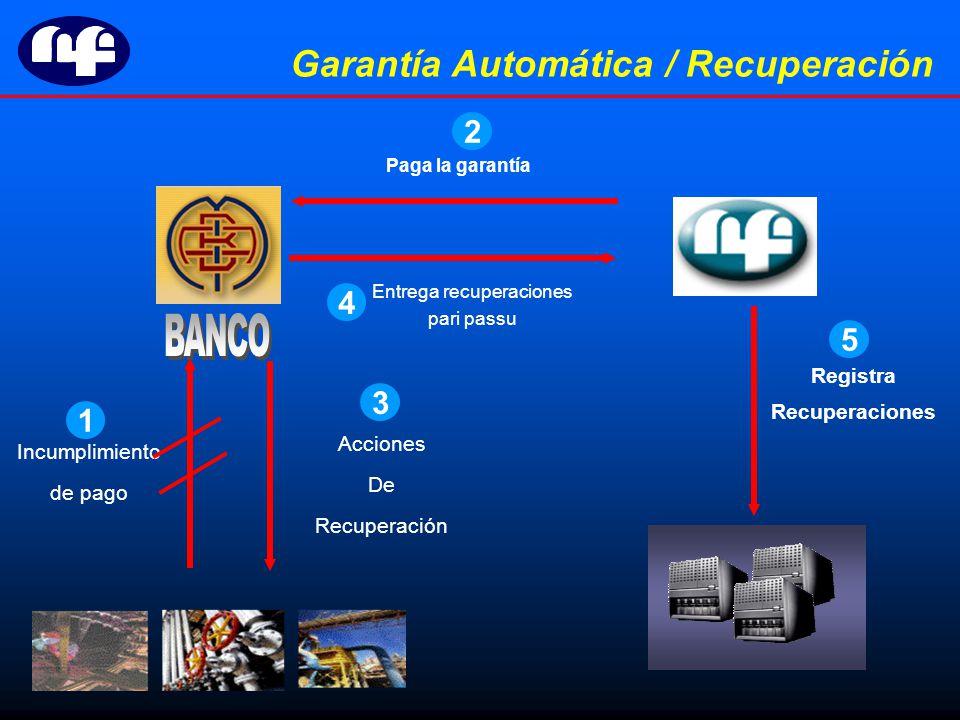 Incumplimiento de pago Paga la garantía Registra Recuperaciones Garantía Automática / Recuperación Acciones De Recuperación Entrega recuperaciones pari passu 1 2 3 4 5