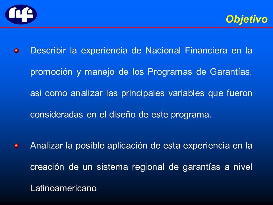 Describir la experiencia de Nacional Financiera en la promoción y manejo de los Programas de Garantías, asi como analizar las principales variables que fueron consideradas en el diseño de este programa.
