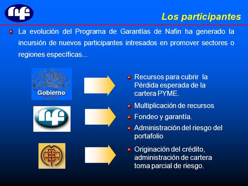 La evolución del Programa de Garantías de Nafin ha generado la incursión de nuevos participantes intresados en promover sectores o regiones específicas...