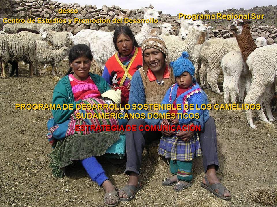 PROGRAMA DE DESARROLLO SOSTENIBLE DE LOS CAMÉLIDOS SUDAMERICANOS DOMÉSTICOS ESTRATEGIA DE COMUNICACIÓN Programa Regional Sur desco Centro de Estudios