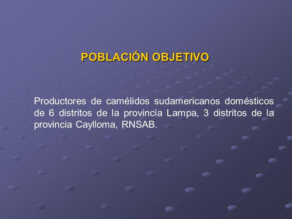 POBLACIÓN OBJETIVO Productores de camélidos sudamericanos domésticos de 6 distritos de la provincia Lampa, 3 distritos de la provincia Caylloma, RNSAB