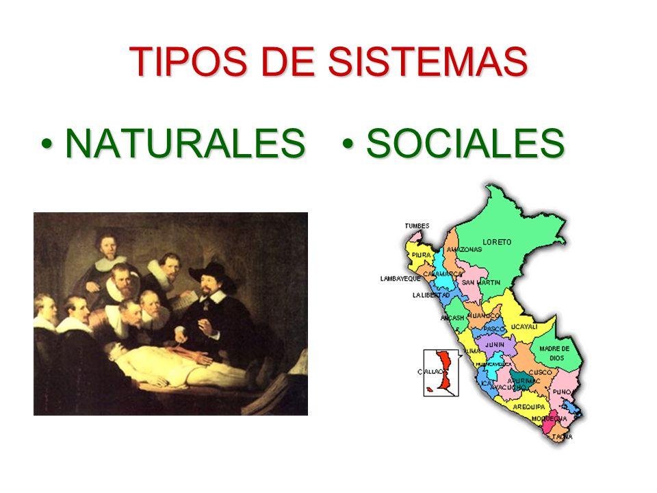 TIPOS DE SISTEMAS NATURALESNATURALESSOCIALES