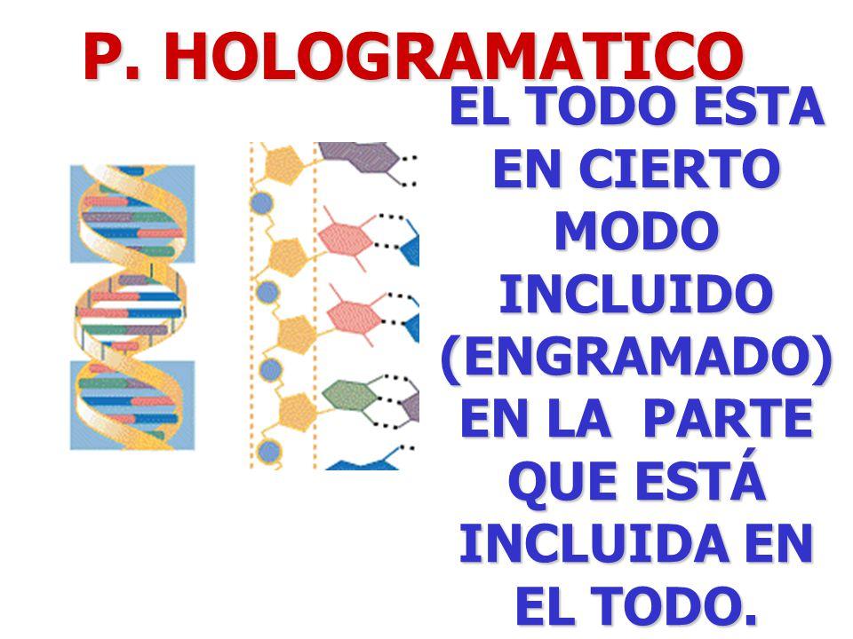 P. HOLOGRAMATICO EL TODO ESTA EN CIERTO MODO INCLUIDO (ENGRAMADO) EN LA PARTE QUE ESTÁ INCLUIDA EN EL TODO.