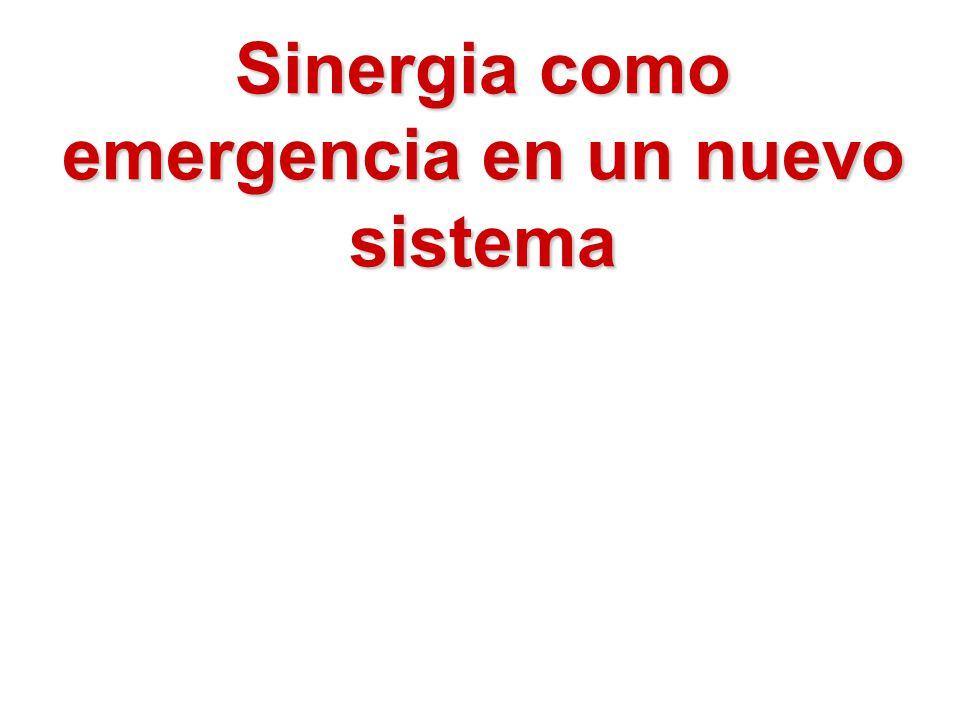 Sinergia como emergencia en un nuevo sistema