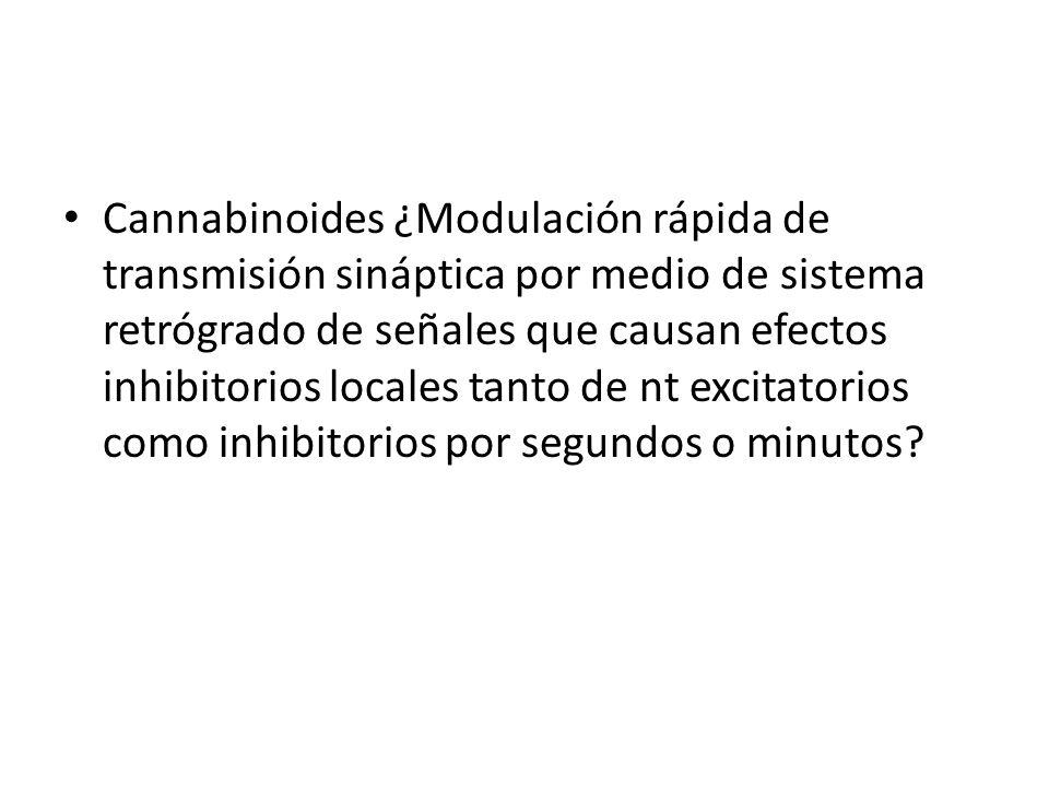 Cannabinoides ¿Modulación rápida de transmisión sináptica por medio de sistema retrógrado de señales que causan efectos inhibitorios locales tanto de