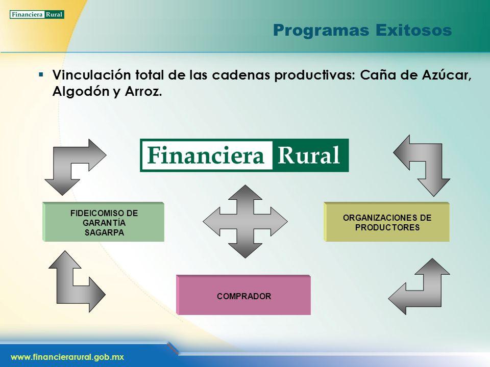 www.financierarural.gob.mx Programas Exitosos Vinculación total de las cadenas productivas: Caña de Azúcar, Algodón y Arroz.