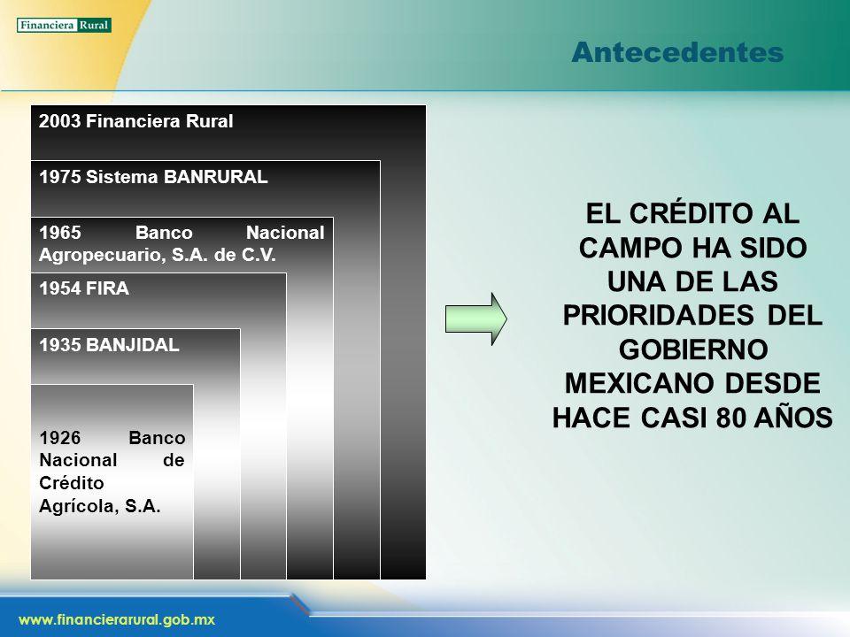 www.financierarural.gob.mx 2003 Financiera Rural 1975 Sistema BANRURAL 1965 Banco Nacional Agropecuario, S.A. de C.V. 1954 FIRA 1935 BANJIDAL 1926 Ban