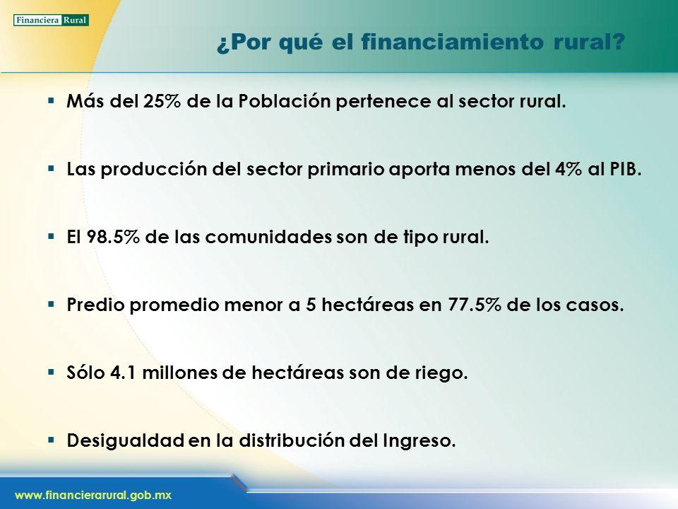 www.financierarural.gob.mx ¿Por qué el financiamiento rural? Más del 25% de la Población pertenece al sector rural. Las producción del sector primario