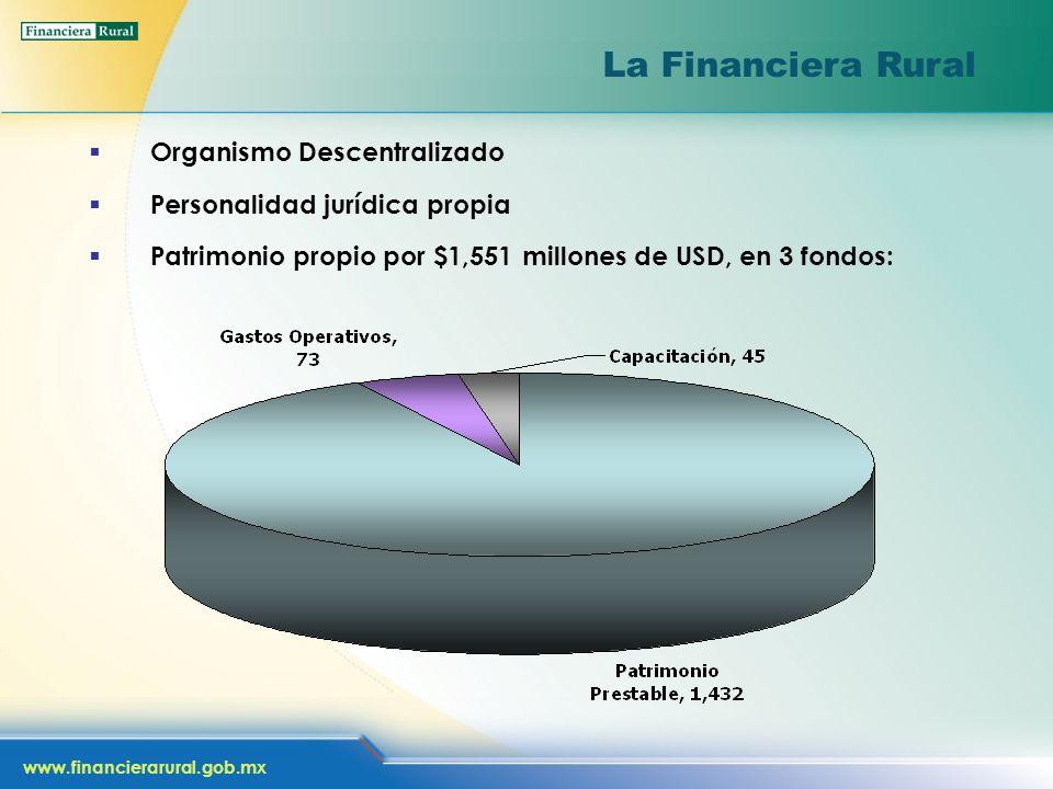 www.financierarural.gob.mx La Financiera Rural Organismo Descentralizado Personalidad jurídica propia Patrimonio propio por $1,551 millones de USD, en 3 fondos: