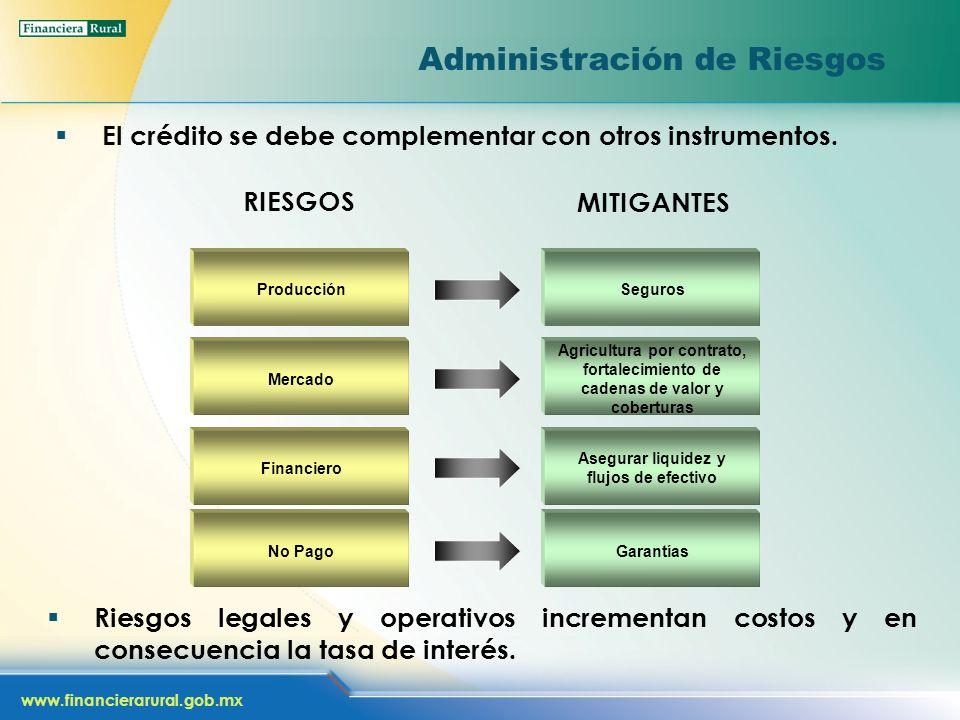 www.financierarural.gob.mx Administración de Riesgos El crédito se debe complementar con otros instrumentos. Producción Financiero Mercado Seguros Ase