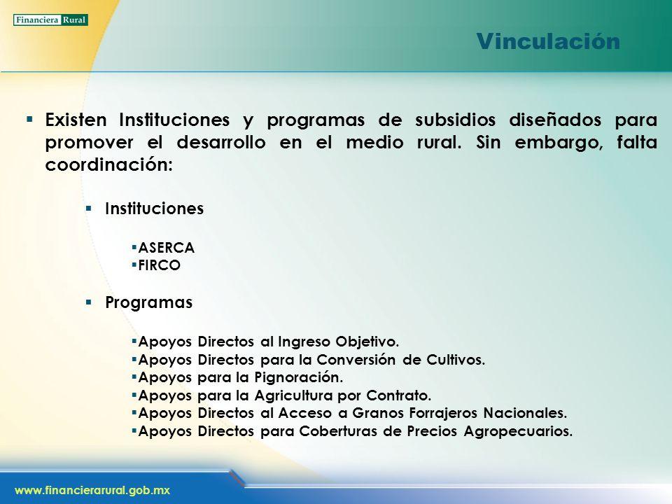 www.financierarural.gob.mx Vinculación Existen Instituciones y programas de subsidios diseñados para promover el desarrollo en el medio rural.