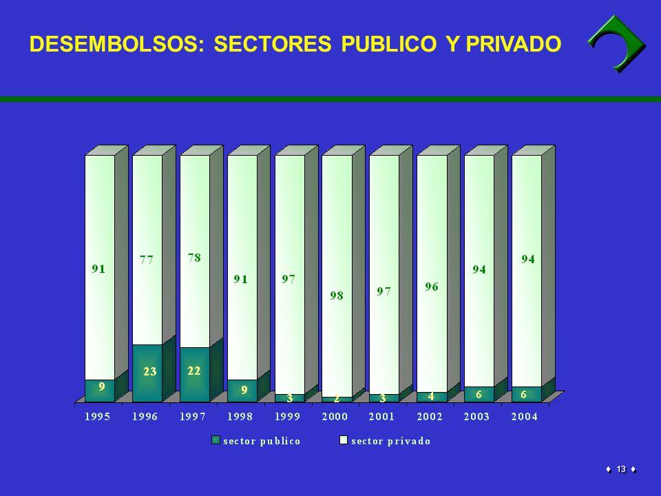 13 DESEMBOLSOS: SECTORES PUBLICO Y PRIVADO