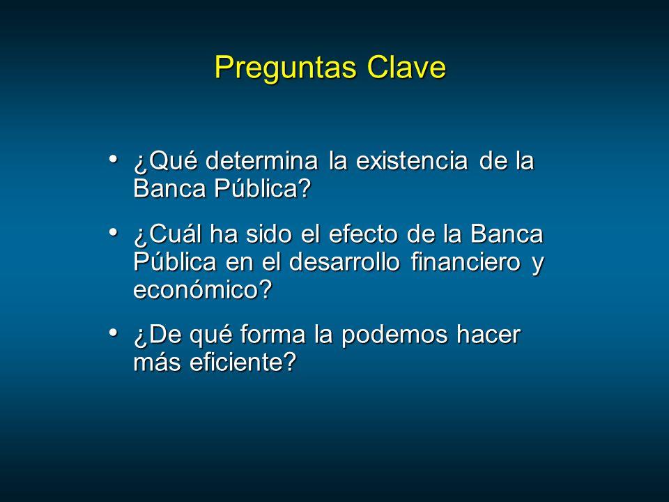 Preguntas Clave ¿Qué determina la existencia de la Banca Pública.