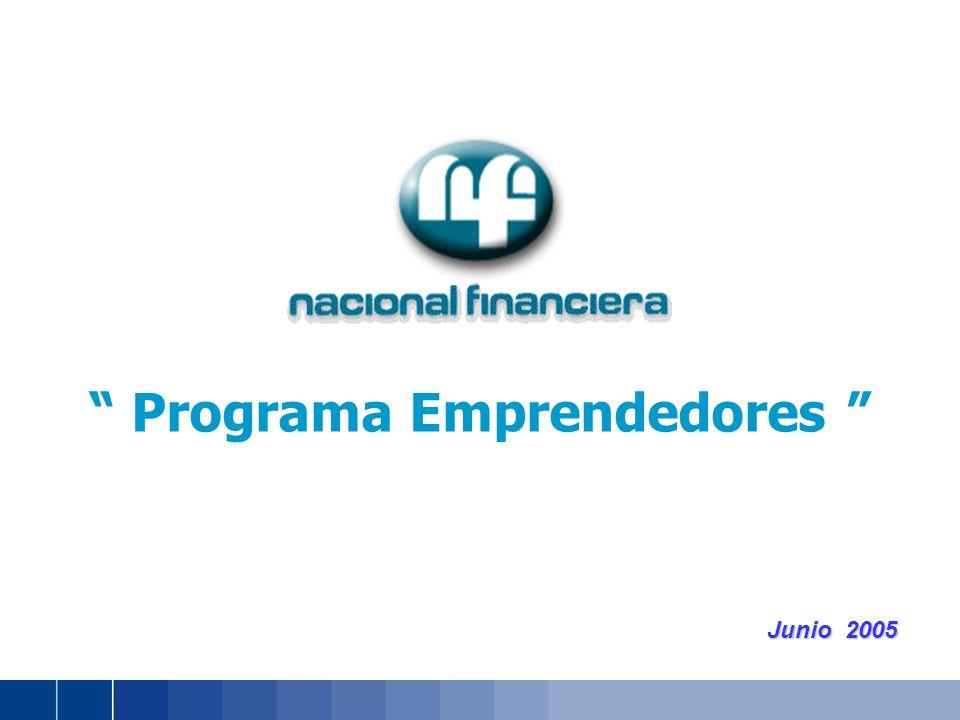 Junio 2005 Programa Emprendedores