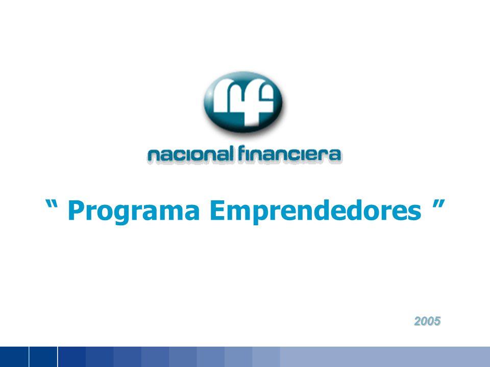 2005 2005 Programa Emprendedores