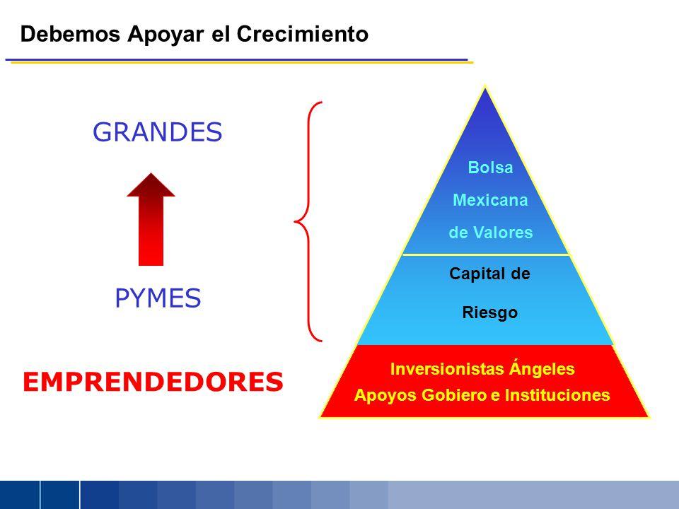 Debemos Apoyar el Crecimiento GRANDES PYMES Bolsa Mexicana de Valores Capital de Riesgo EMPRENDEDORES Apoyos Gobiero e Instituciones Inversionistas Án