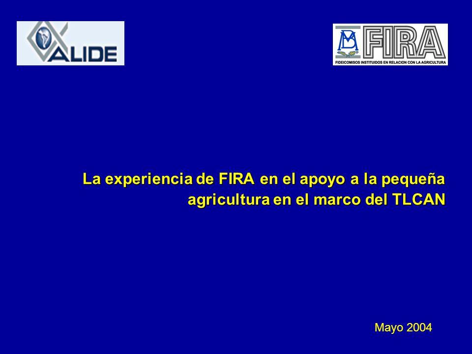 La experiencia de FIRA en el apoyo a la pequeña agricultura en el marco del TLCAN Mayo 2004