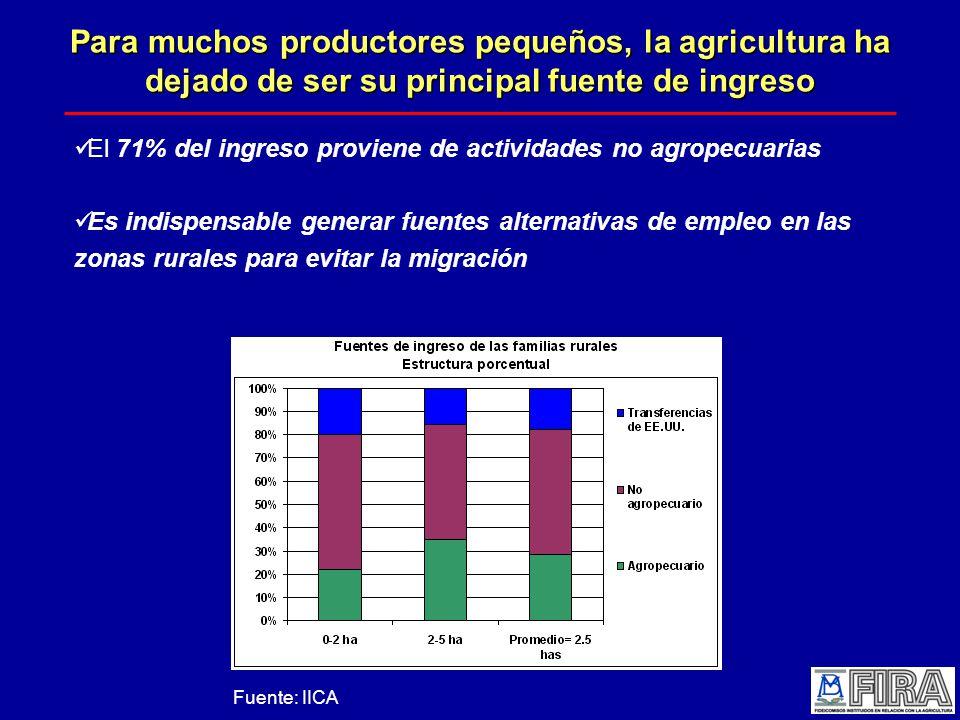 Para muchos productores pequeños, la agricultura ha dejado de ser su principal fuente de ingreso El 71% del ingreso proviene de actividades no agropecuarias Es indispensable generar fuentes alternativas de empleo en las zonas rurales para evitar la migración Fuente: IICA