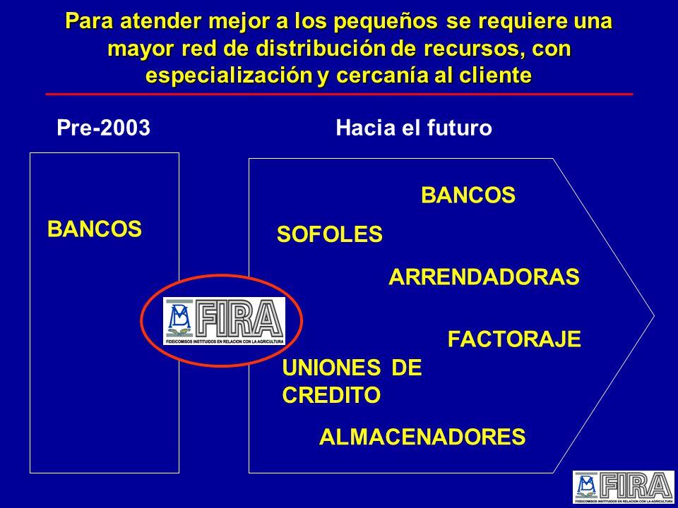 Para atender mejor a los pequeños se requiere una mayor red de distribución de recursos, con especialización y cercanía al cliente Pre-2003Hacia el futuro BANCOS ALMACENADORES SOFOLES ARRENDADORAS UNIONES DE CREDITO FACTORAJE