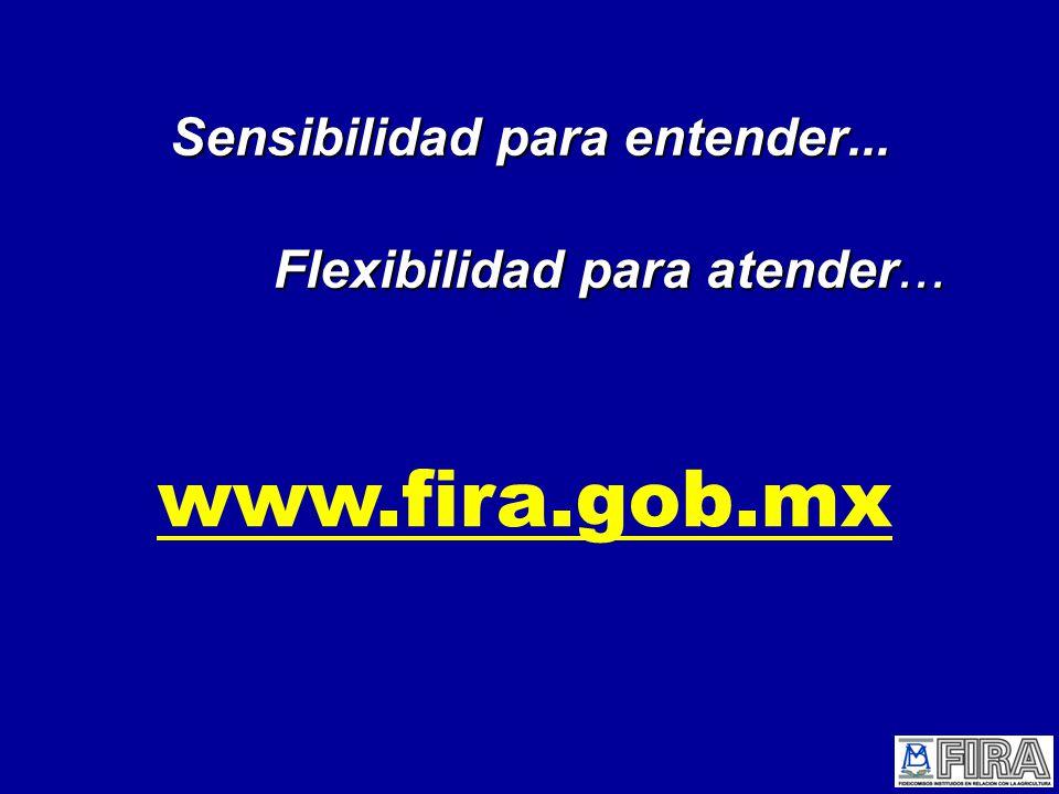 www.fira.gob.mx Sensibilidad para entender... Flexibilidad para atender...