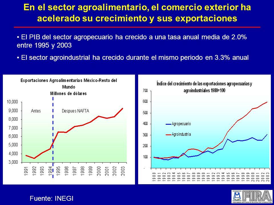 En el sector agroalimentario, el comercio exterior ha acelerado su crecimiento y sus exportaciones El PIB del sector agropecuario ha crecido a una tasa anual media de 2.0% entre 1995 y 2003 El sector agroindustrial ha crecido durante el mismo periodo en 3.3% anual Fuente: INEGI