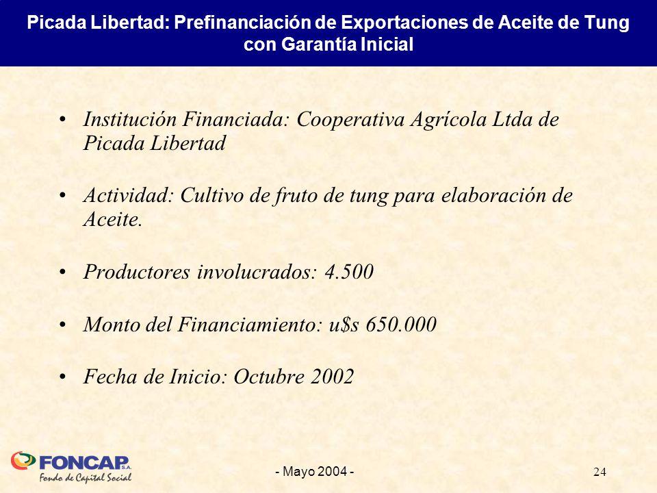 24- Mayo 2004 - Institución Financiada: Cooperativa Agrícola Ltda de Picada Libertad Actividad: Cultivo de fruto de tung para elaboración de Aceite.