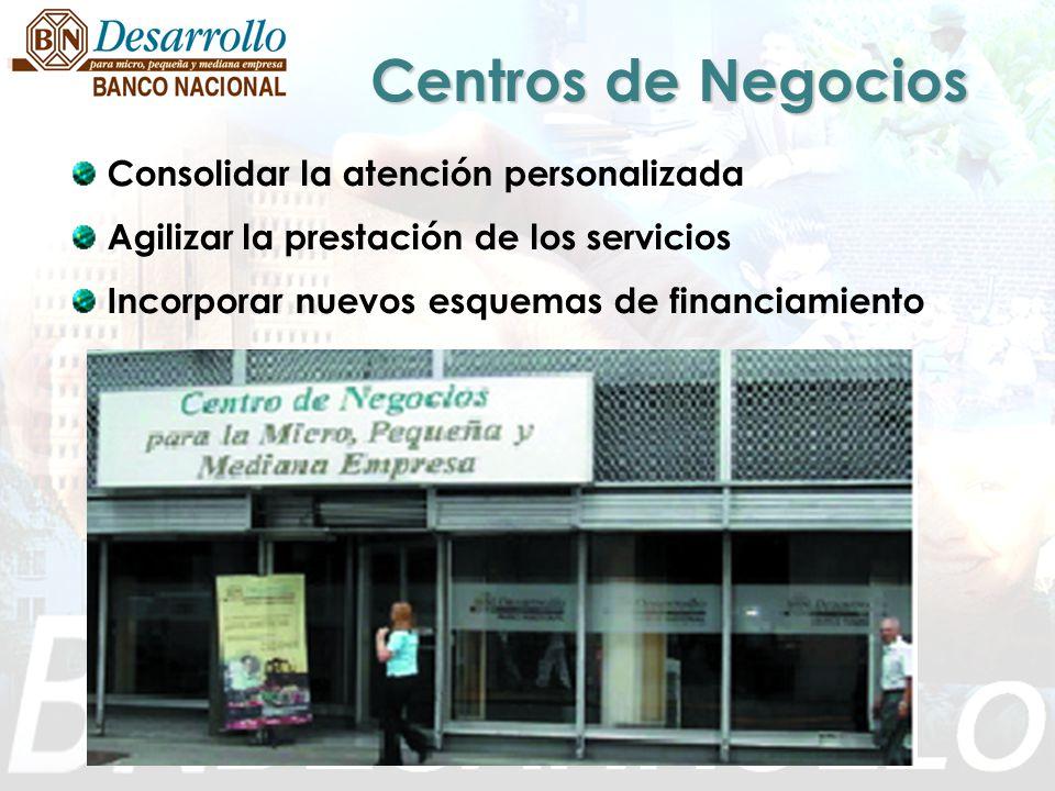 Consolidar la atención personalizada Agilizar la prestación de los servicios Incorporar nuevos esquemas de financiamiento Centros de Negocios
