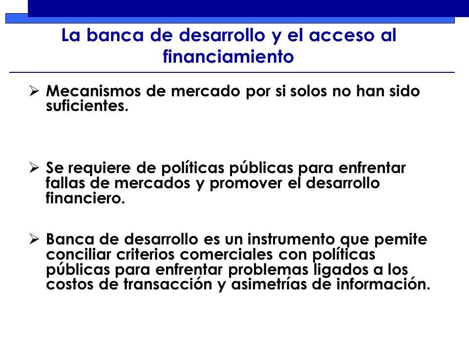 La banca de desarrollo y el acceso al financiamiento Mecanismos de mercado por si solos no han sido suficientes.