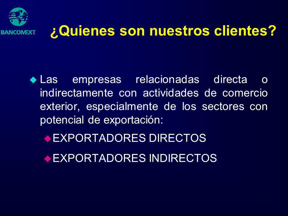 ¿Quienes son nuestros clientes? u Las empresas relacionadas directa o indirectamente con actividades de comercio exterior, especialmente de los sector