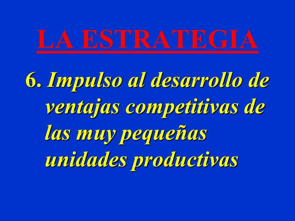 LA ESTRATEGIA 6. Impulso al desarrollo de ventajas competitivas de las muy pequeñas unidades productivas