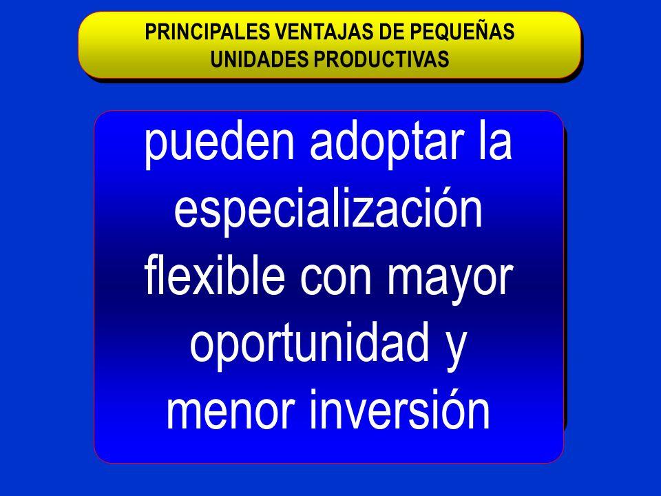 pueden adoptar la especialización flexible con mayor oportunidad y menor inversión PRINCIPALES VENTAJAS DE PEQUEÑAS UNIDADES PRODUCTIVAS