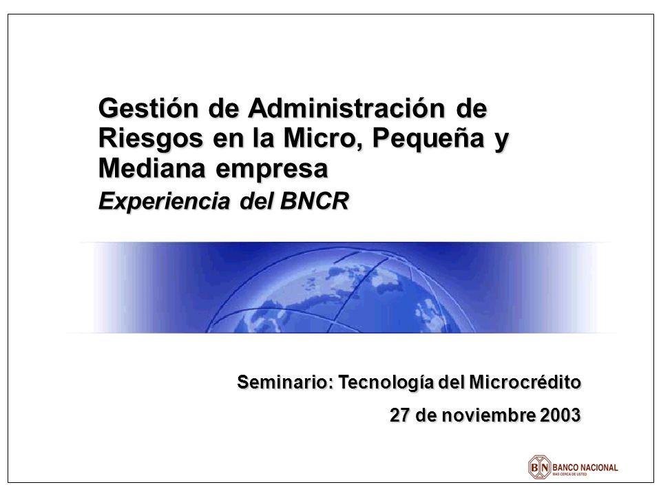 Gestión de Administración de Riesgos en la Micro, Pequeña y Mediana empresa Experiencia del BNCR Seminario: Tecnología del Microcrédito 27 de noviembre 2003