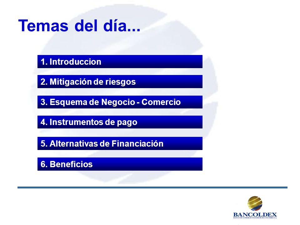 Temas del día... 1. Introduccion 4. Instrumentos de pago 5. Alternativas de Financiación 3. Esquema de Negocio - Comercio 2. Mitigación de riesgos 6.