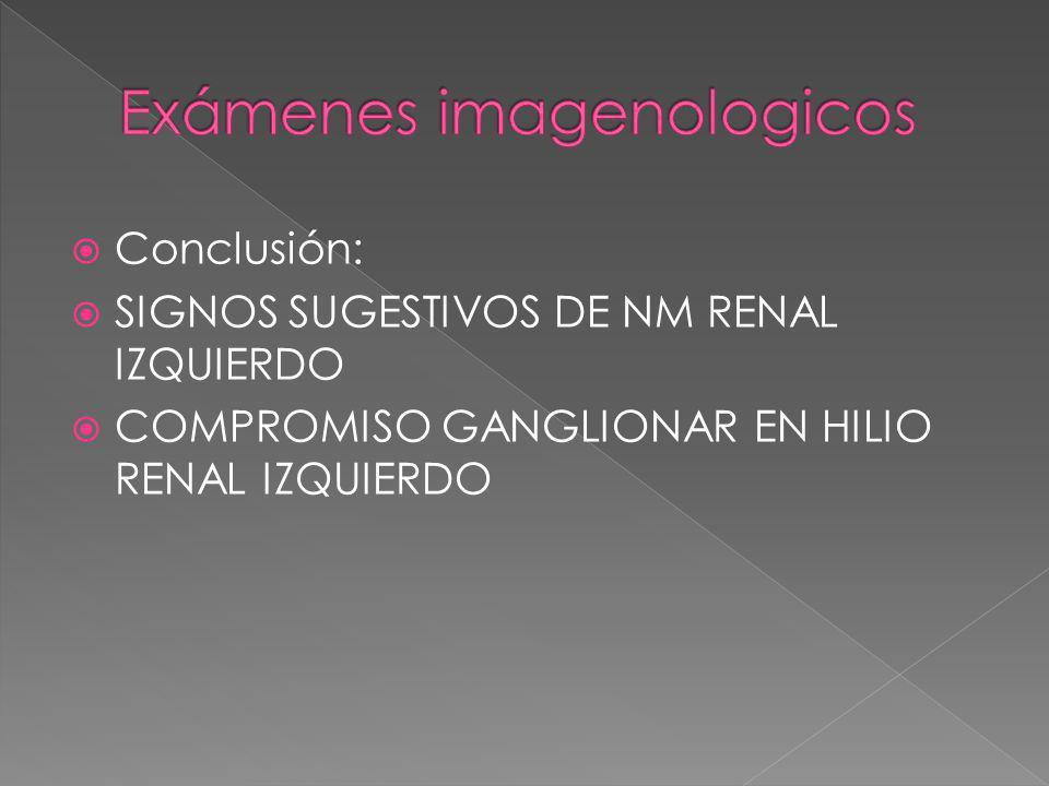 Conclusión: SIGNOS SUGESTIVOS DE NM RENAL IZQUIERDO COMPROMISO GANGLIONAR EN HILIO RENAL IZQUIERDO