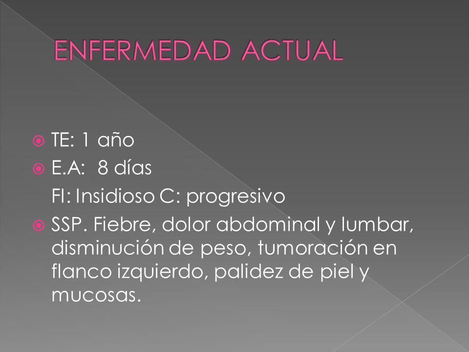 TE: 1 año E.A: 8 días FI: Insidioso C: progresivo SSP. Fiebre, dolor abdominal y lumbar, disminución de peso, tumoración en flanco izquierdo, palidez