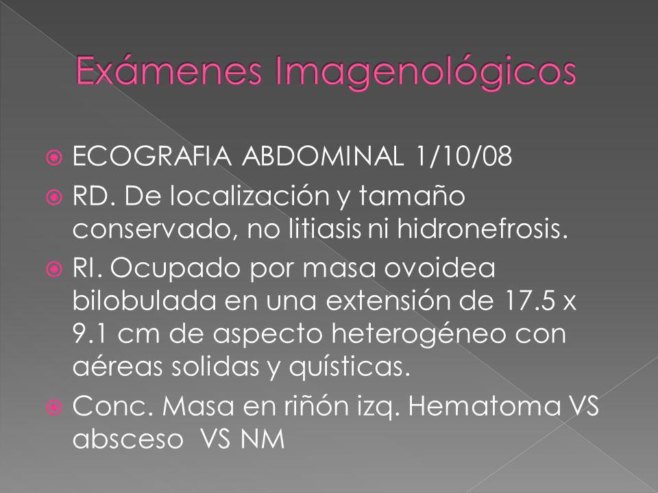 ECOGRAFIA ABDOMINAL 1/10/08 RD. De localización y tamaño conservado, no litiasis ni hidronefrosis. RI. Ocupado por masa ovoidea bilobulada en una exte