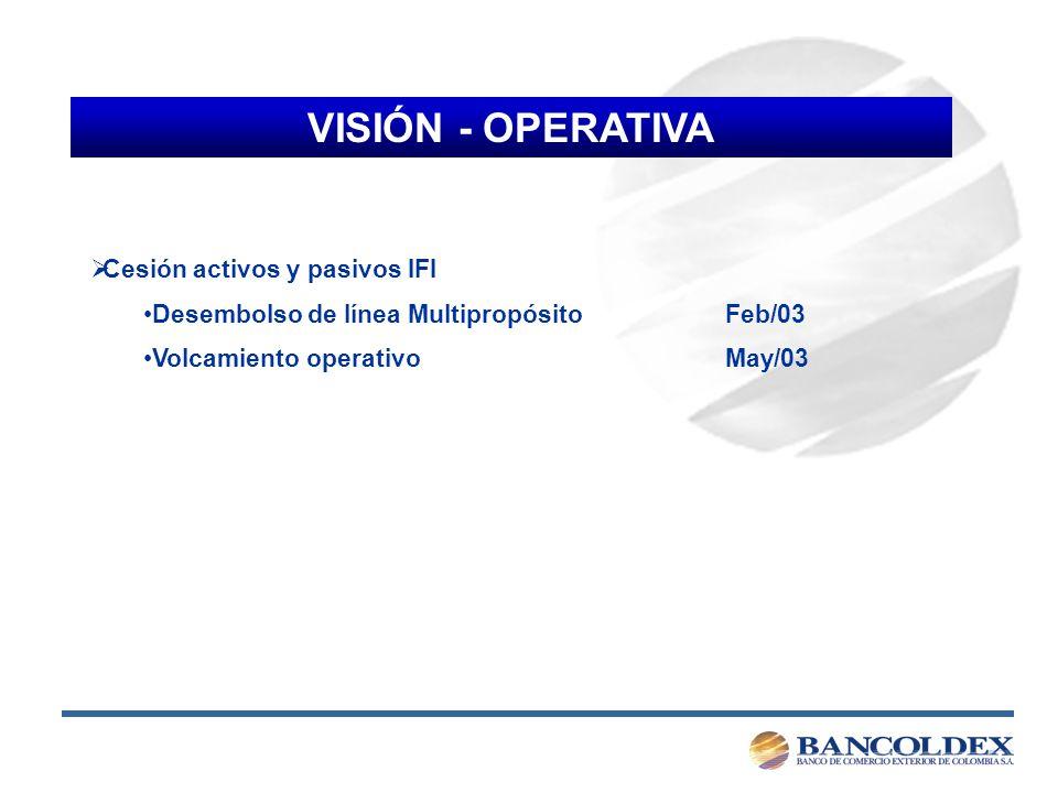 VISIÓN - OPERATIVA Cesión activos y pasivos IFI Desembolso de línea Multipropósito Feb/03 Volcamiento operativo May/03