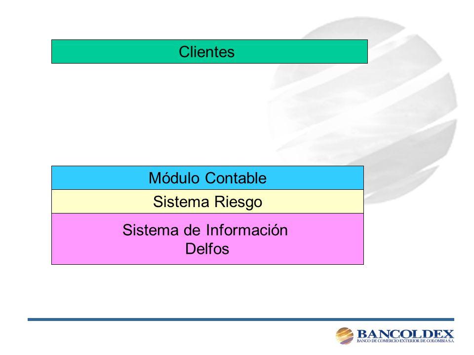 Módulo Contable Sistema de Información Delfos Clientes Sistema Riesgo