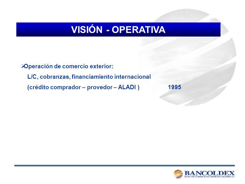 VISIÓN - OPERATIVA Operación de comercio exterior: L/C, cobranzas, financiamiento internacional (crédito comprador – provedor – ALADI )1995