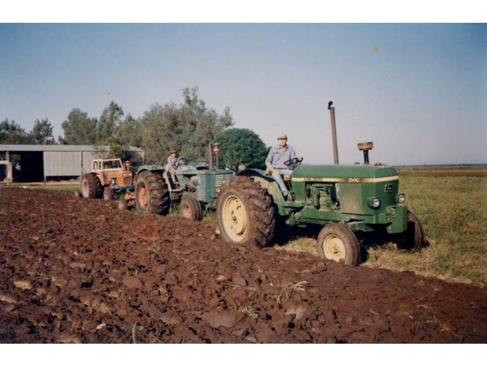Agricultura Tradicional Emplea bajo nivel tecnológico, bajos insumos Requiere pocos servicios Usa poca información y conocimientos Actividad familiar y baja productividad Da lugar a localidades pobres Constituye un modo de vida