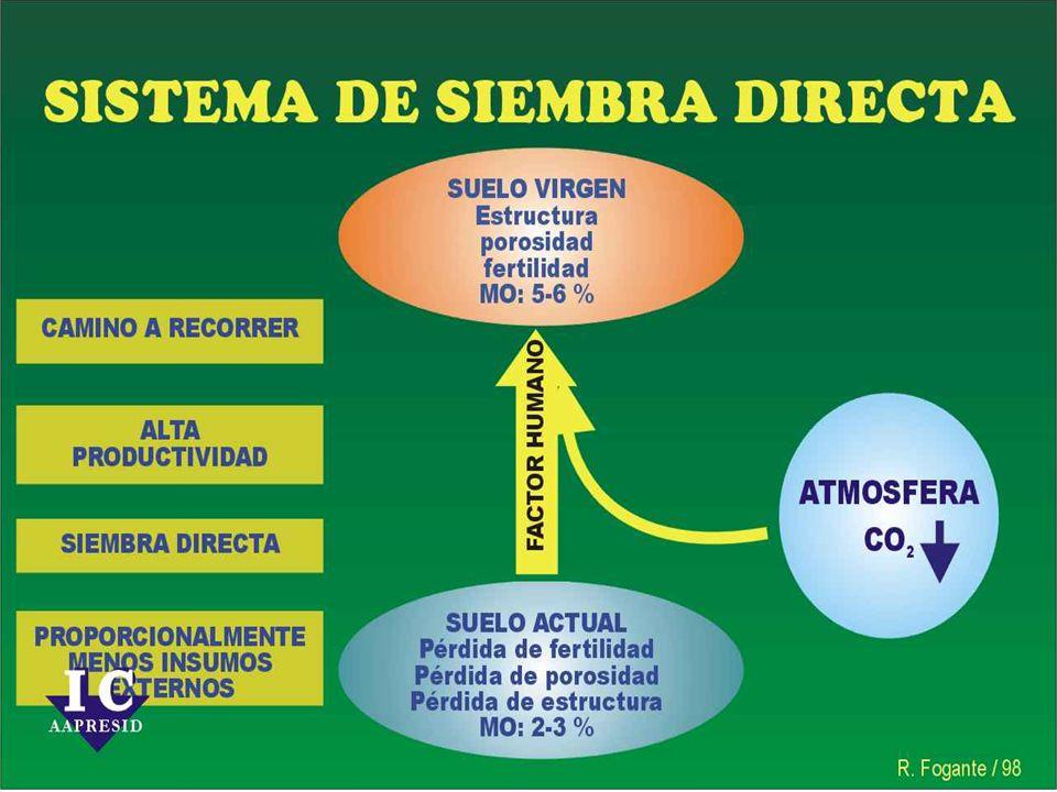CONSUMO DE PROTEINAS = CONSUMO DE SOJA Consumo Mundial por tipo de Harinas 2002/03