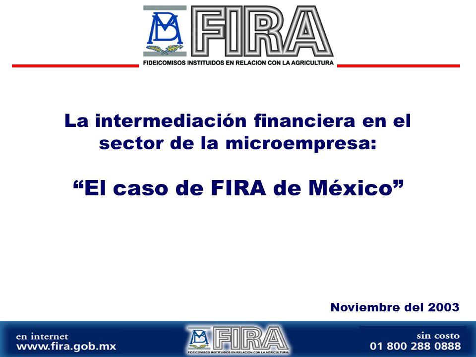 La intermediación financiera en el sector de la microempresa: Noviembre del 2003 El caso de FIRA de México