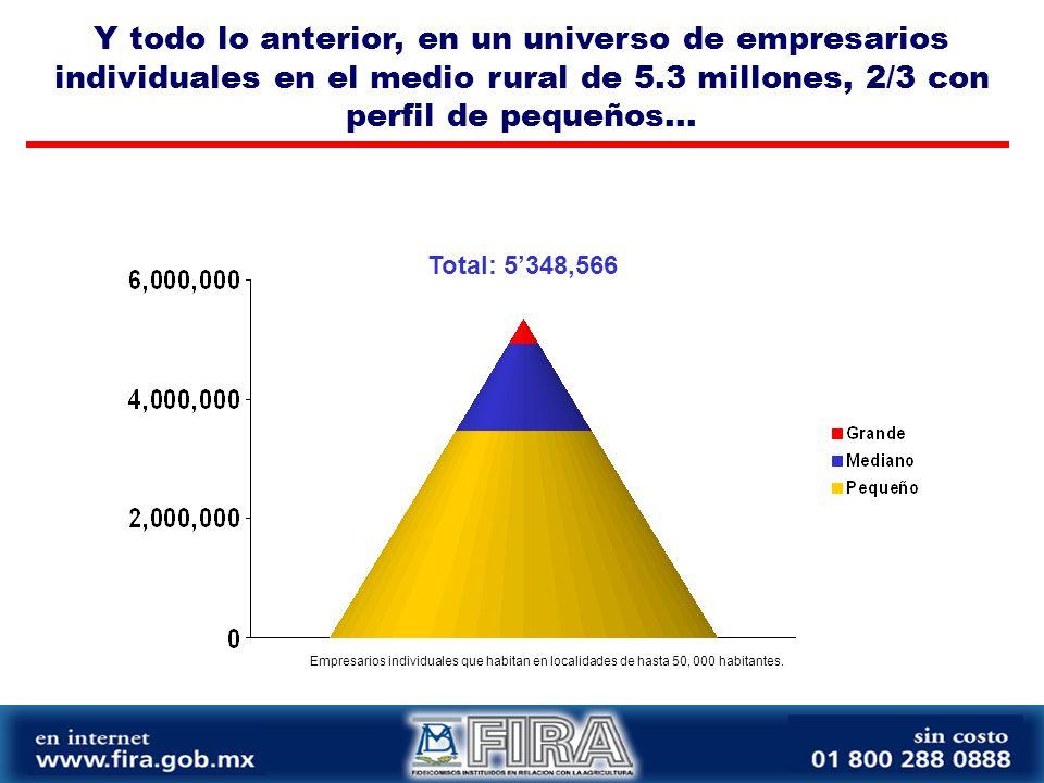 Y todo lo anterior, en un universo de empresarios individuales en el medio rural de 5.3 millones, 2/3 con perfil de pequeños...