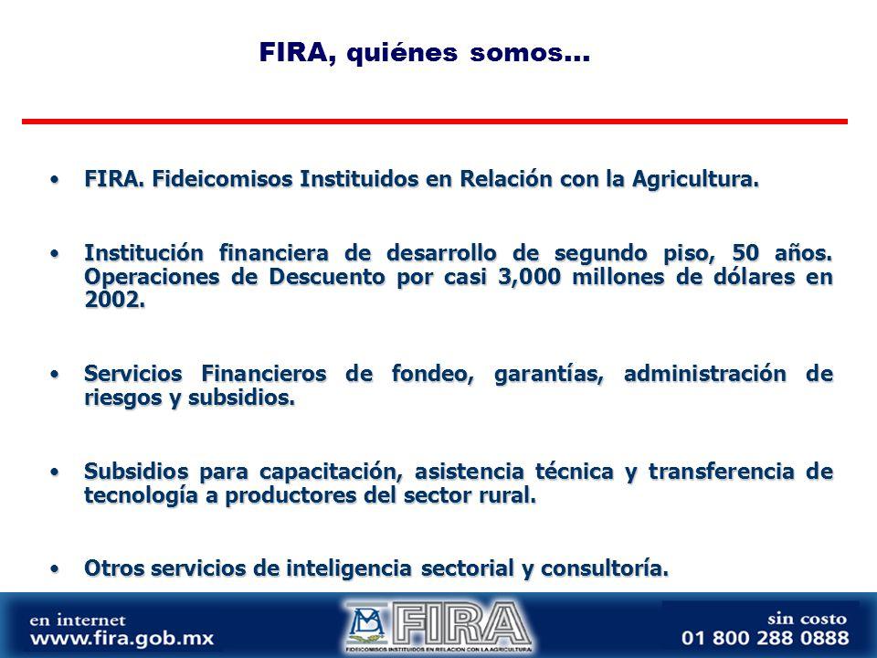 FIRA. Fideicomisos Instituidos en Relación con la Agricultura.FIRA.